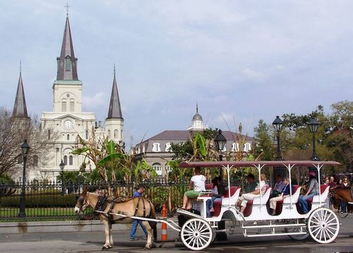 New Orleans Carriage