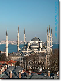 Turkey blumosk